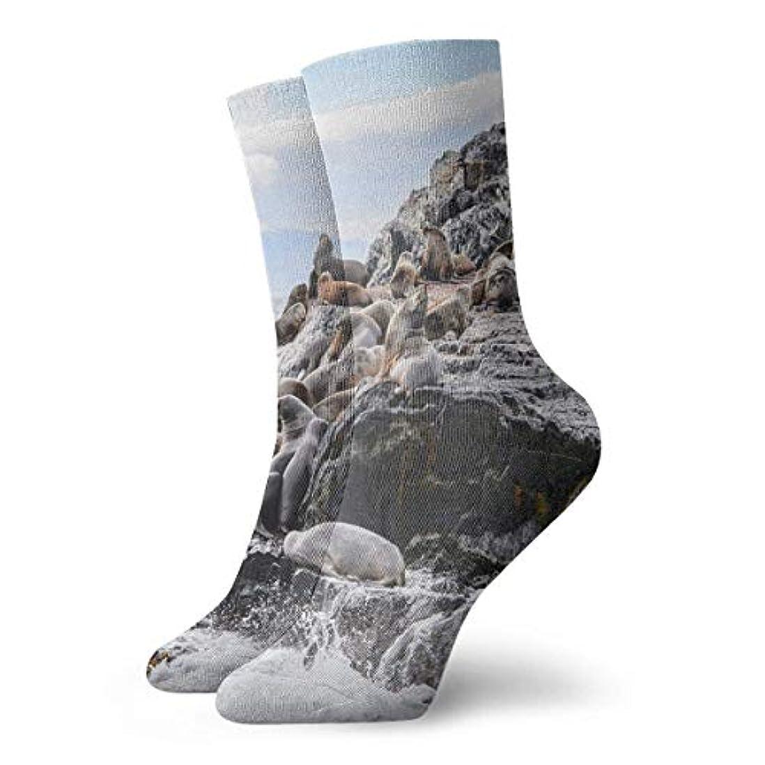 不完全な吸収するパズルQRRIYノベルティデザインクルーソックス、ライオンズロック、クリスマス休暇クレイジー楽しいカラフルな派手な靴下、冬暖かいストレッチクルーソックス