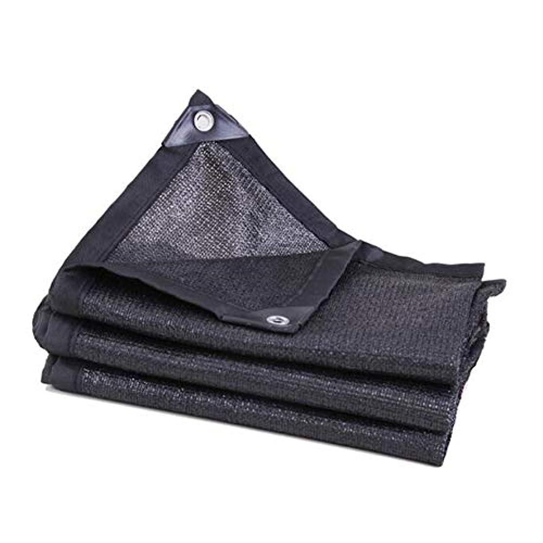 テンション戦略スタックDALL 日焼け止め布 80% シェードセイル 6ピン バルコニー 中庭 アウトドア 断熱 複数のサイズ (Color : Black, Size : 3×10m)