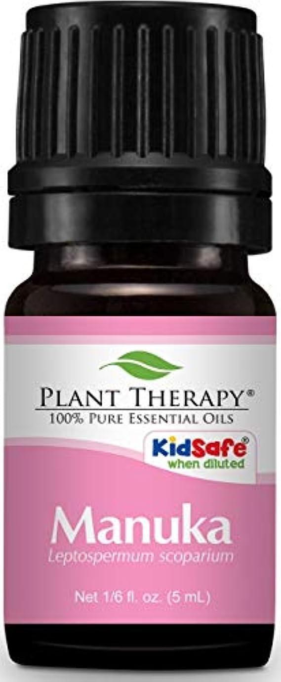 手位置する行商人Manuka Essential Oil. 5 ml. 100% Pure, Undiluted, Therapeutic Grade.