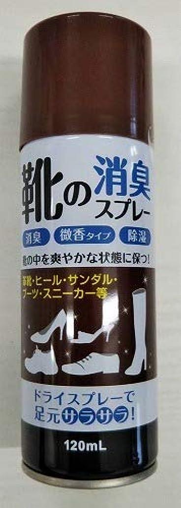 苦痛哲学的少ない【◇】靴の消臭スプレー120ml 微香性 足元さらさら!消臭?除湿など効果!