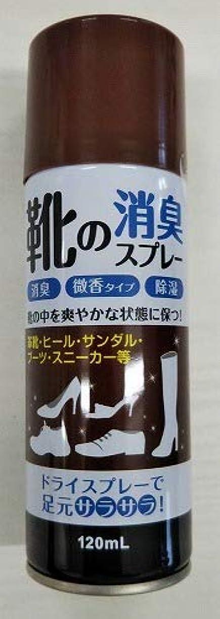 乳球体ソフトウェア【◇】靴の消臭スプレー120ml 微香性 足元さらさら!消臭?除湿など効果!
