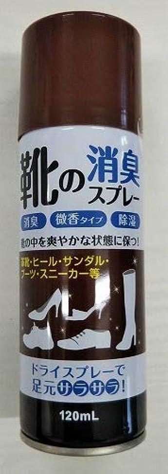 句信者栄養【◇】靴の消臭スプレー120ml 微香性 足元さらさら!消臭?除湿など効果!