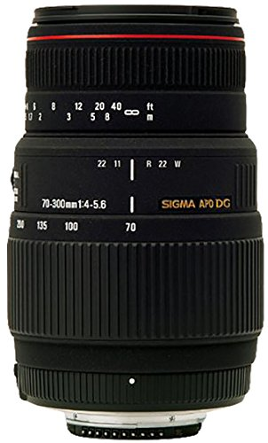 SIGMA 望遠ズームレンズ APO 70-300mm F4-5.6 DG MACRO キヤノン用 フルサイズ対応 508272