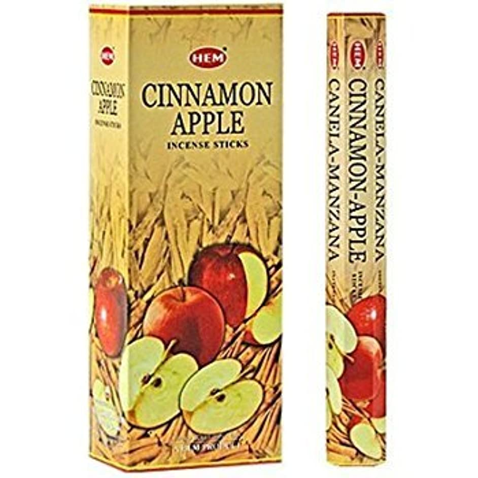 ふつう楽しませるペインCinnamon Apple - Box of Six 20 Stick Tubes - HEM Incense