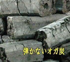 【バーベキュー炭 七輪 網焼】 BBQ用オガ炭 優火備長炭(ゆうび) 5Kg