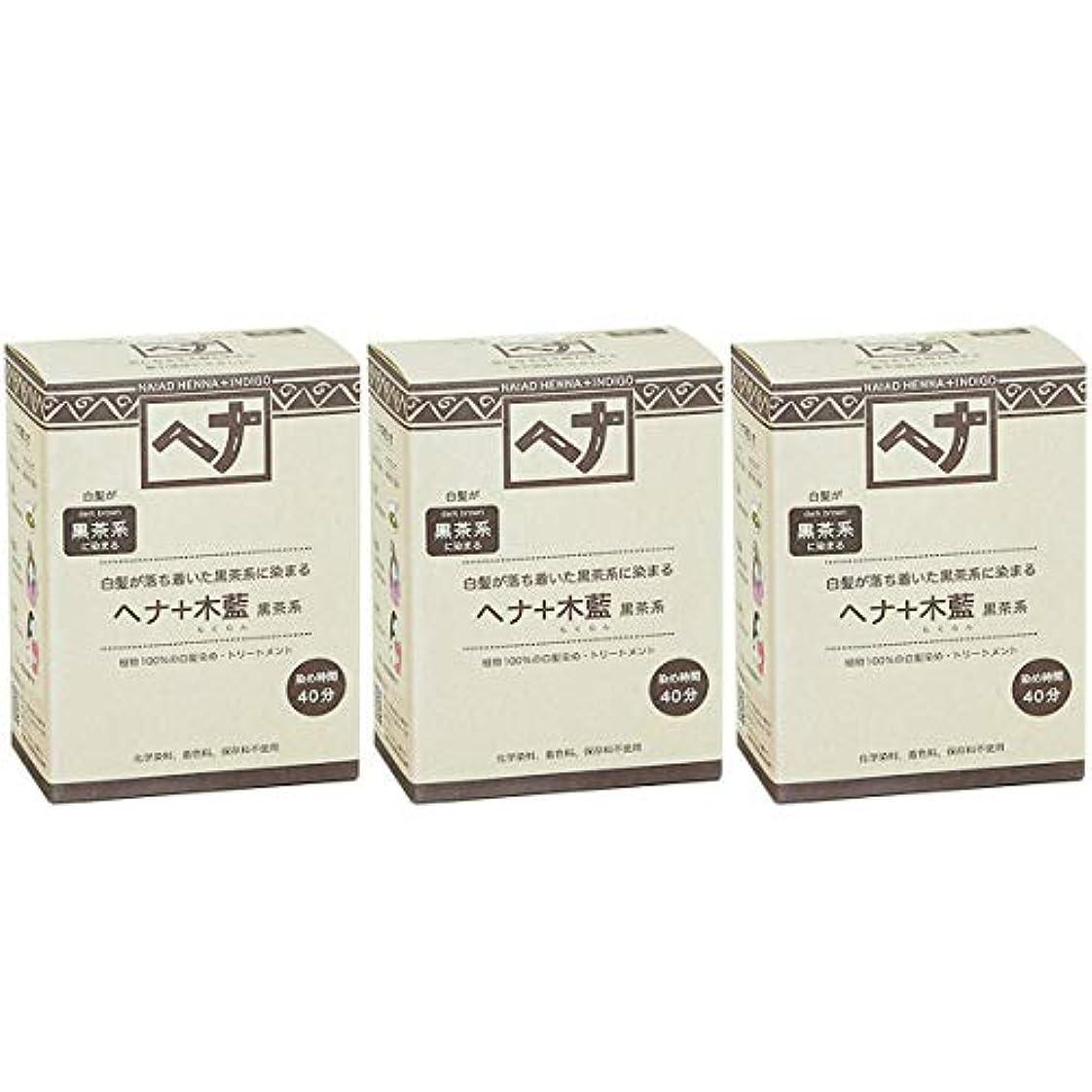 ペインティング地獄無条件ナイアード ヘナ + 木藍 黒茶系 白髪が落ち着いた黒茶系に染まる 100g 3個セット