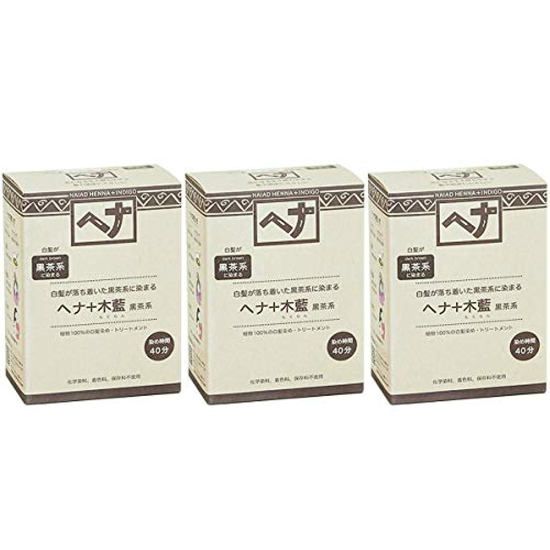 会計士イチゴケニアナイアード ヘナ + 木藍 黒茶系 白髪が落ち着いた黒茶系に染まる 100g 3個セット