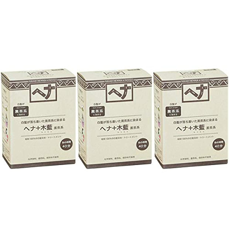 輝く顔料そばにナイアード ヘナ + 木藍 黒茶系 白髪が落ち着いた黒茶系に染まる 100g 3個セット