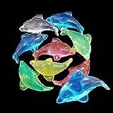 アクリルアイス  ドルフィン  蛍光クリア(1kg)  / お楽しみグッズ(紙風船)付きセット