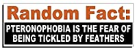ランダムFact – pteronophobia is the fear of。。。バンパーステッカー – Quote Me印刷 25 Pack PFT-490-25