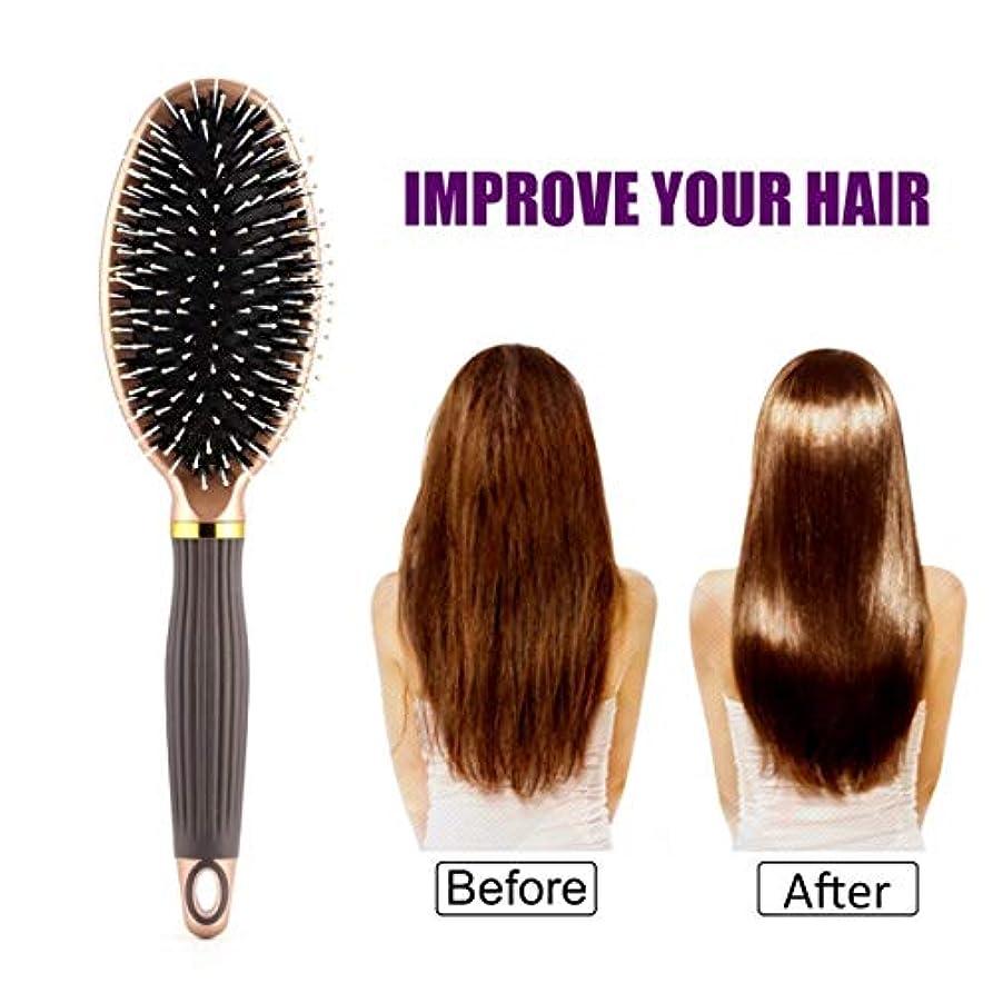 動揺させるリング慣れている女性の男性ヘア頭皮マッサージ櫛毛 & ナイロンヘアブラシウェットカーリーコンディショナーヘアブラシサロン理髪スタイリングツール