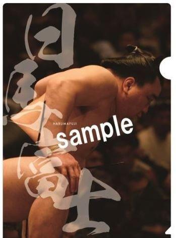 大相撲 2018年( 平成30年 ) カレンダー クリアファイル 2枚付き 日馬富士セット