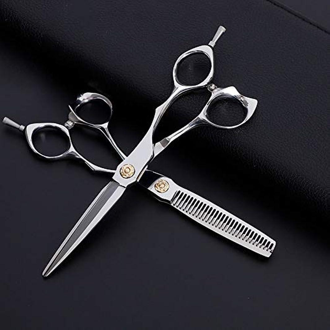 チップ素晴らしい良い多くのうなる6インチ美容院プロのヘアカットフラット+歯はさみセット、クラシック斜めハンドル理髪はさみセット ヘアケア (色 : Silver)