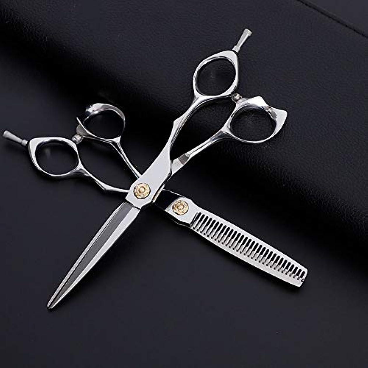 アームストロング悪夢行動6インチ美容院プロのヘアカットフラット+歯はさみセット、クラシック斜めハンドル理髪はさみセット モデリングツール (色 : Silver)