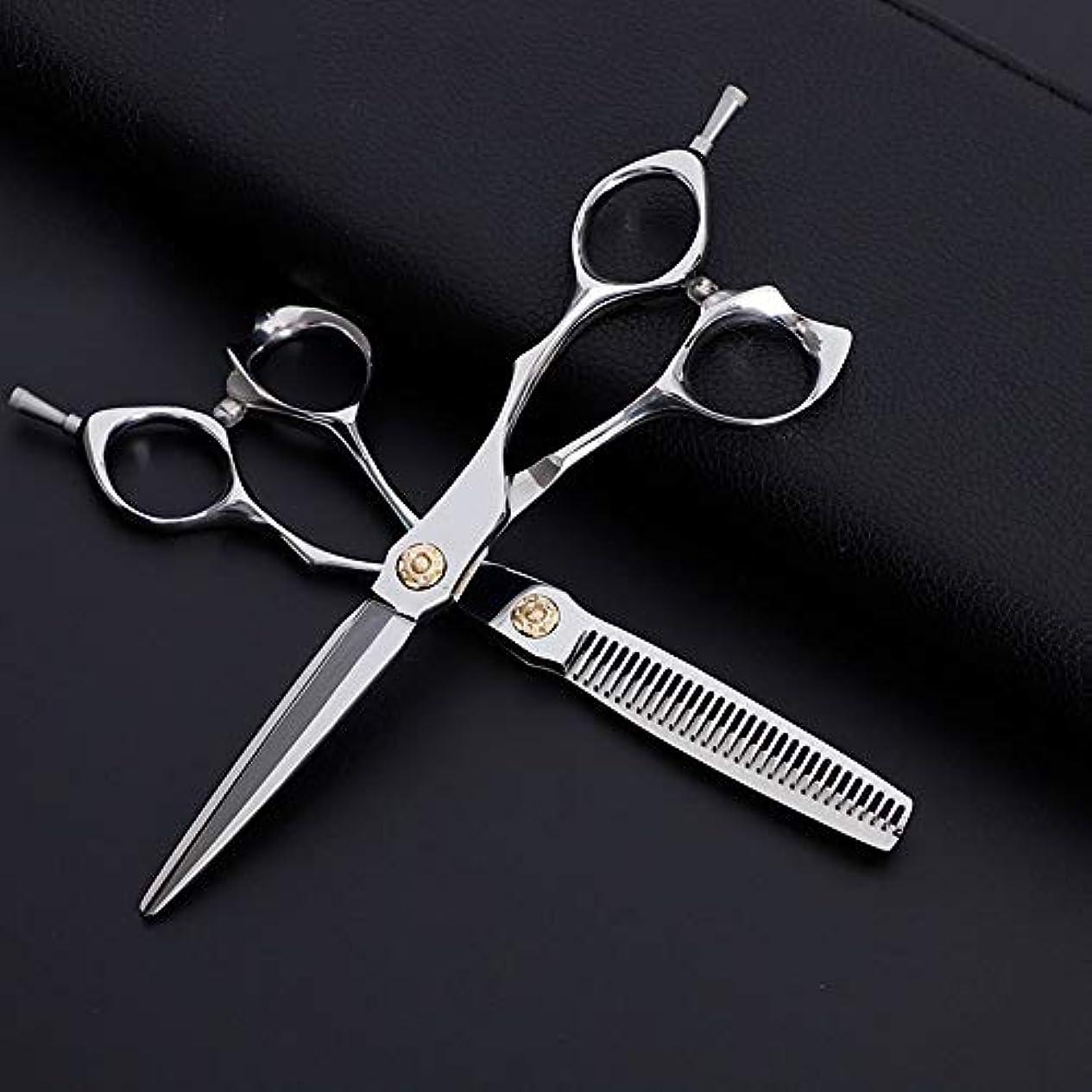 チケットシュリンクとティームTAKAYAMA 6インチ美容院プロのヘアカットフラットカット+歯カットセット、古典的な斜めハンドル理髪はさみ (色 : Silver)