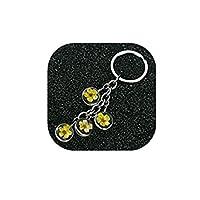 ドライフラワーシルバートーンダブルフェイスガラスクリスタルボールペンダント鍵リングジュエリーチェーンが女性のために(3)