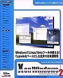 X on Windows 2