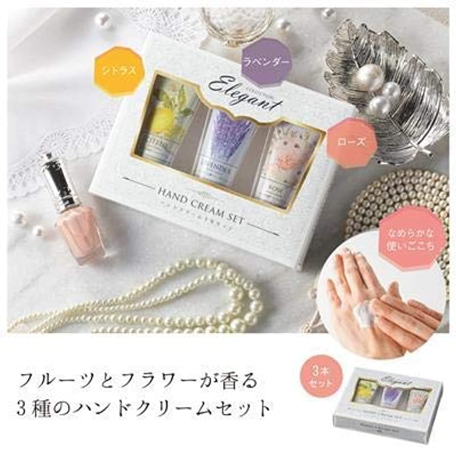 整然とした全体に誓うハンドクリーム3本セット(化粧箱入)【まとめ売り10個セット】