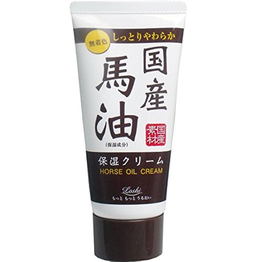 刺繍安全でない砂漠ロッシ モイストエイド 国産馬油保湿ハンドクリーム 45g