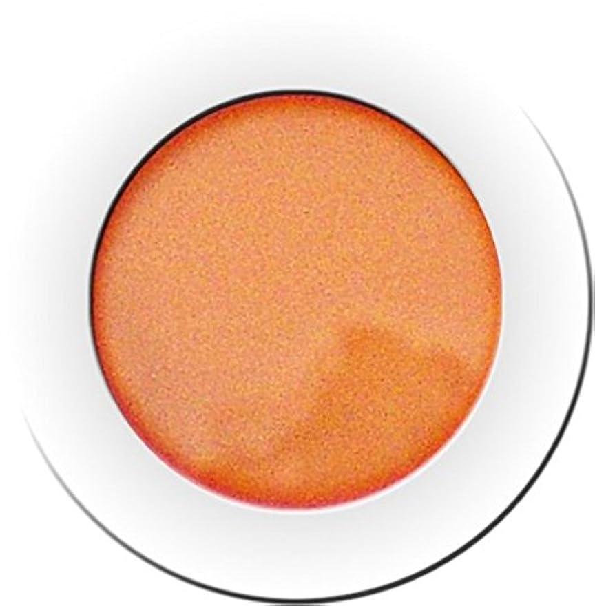 電気の疲れた予感カラーパウダー 7g ヘリウム