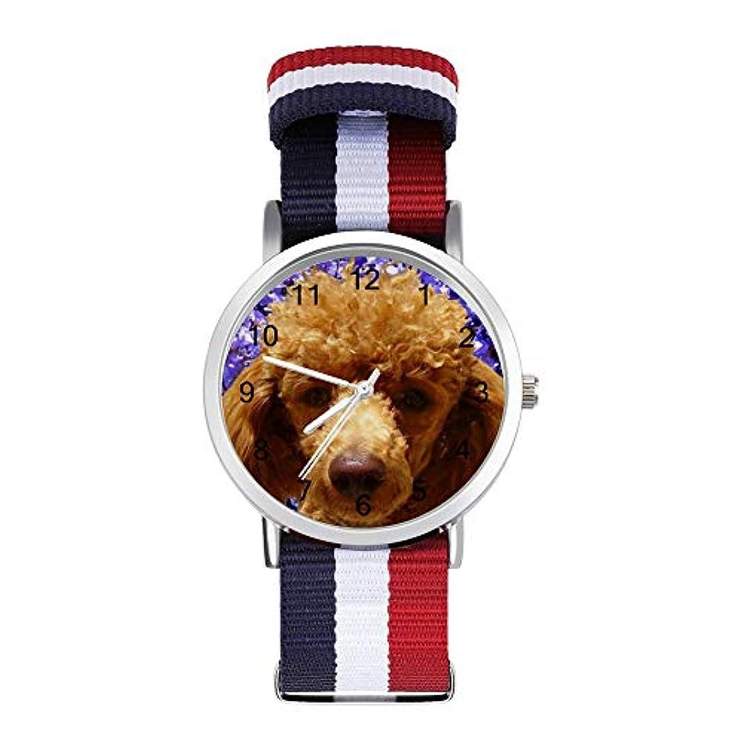 窒素遠征排除HAYOE 腕時計 時計 ラウンドフェイスウォッチ ファッション 男女兼用 Nylon Watch ギフト プレゼント かわいいプードル