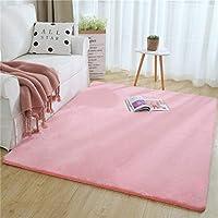 厚いぬいぐるみカーペット模造ウサギの毛皮の床マットリビングルームの寝室のコーヒーテーブルのクッション感触すべての平方メートル2000 G洗える (色 : E, サイズ さいず : 80*180センチメートル)