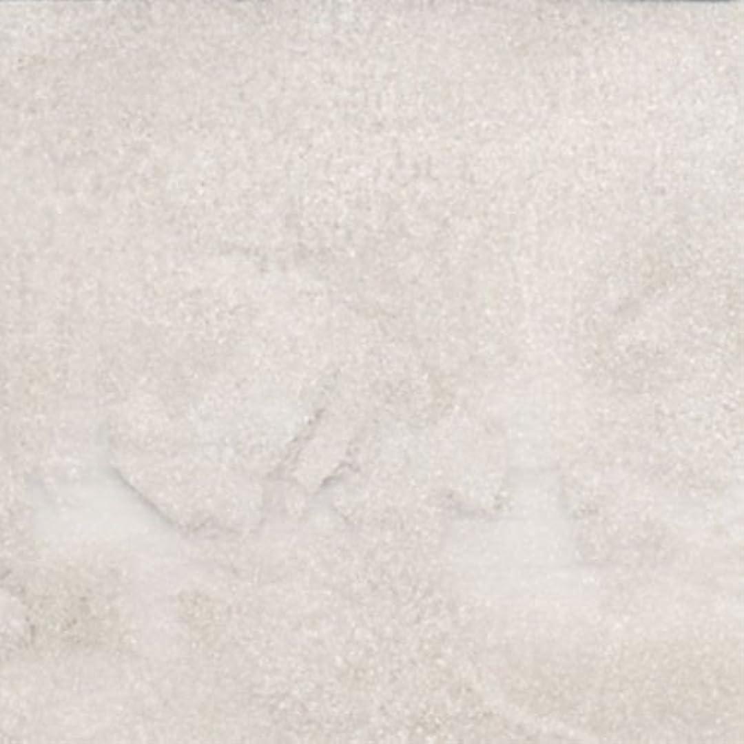 ピカエース ネイル用パウダー パステルパウダー #840 ホワイト 0.25g