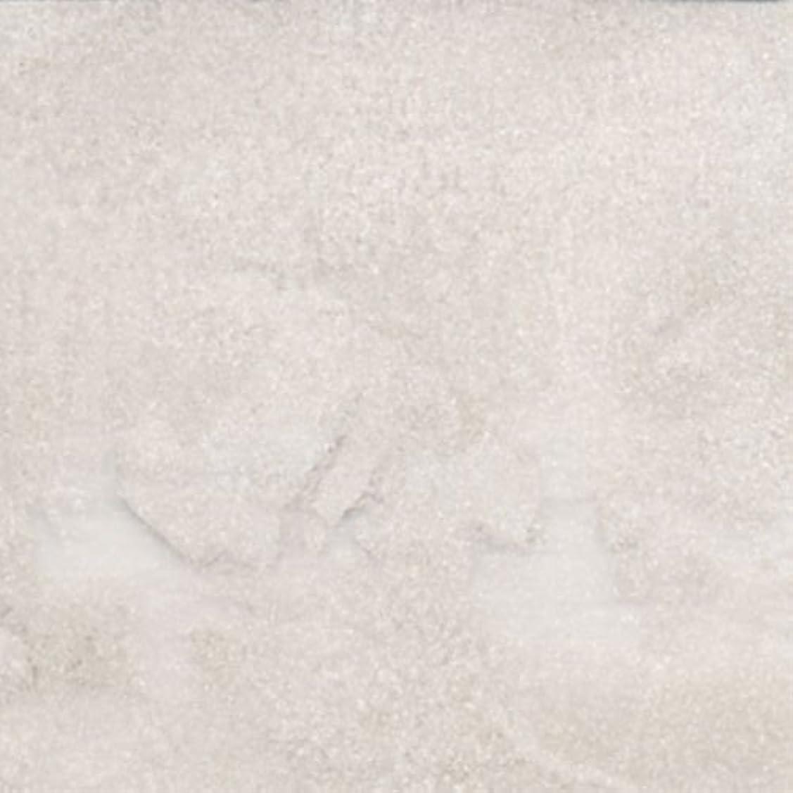 費やすトラブル乱用ピカエース ネイル用パウダー パステルパウダー #840 ホワイト 0.25g