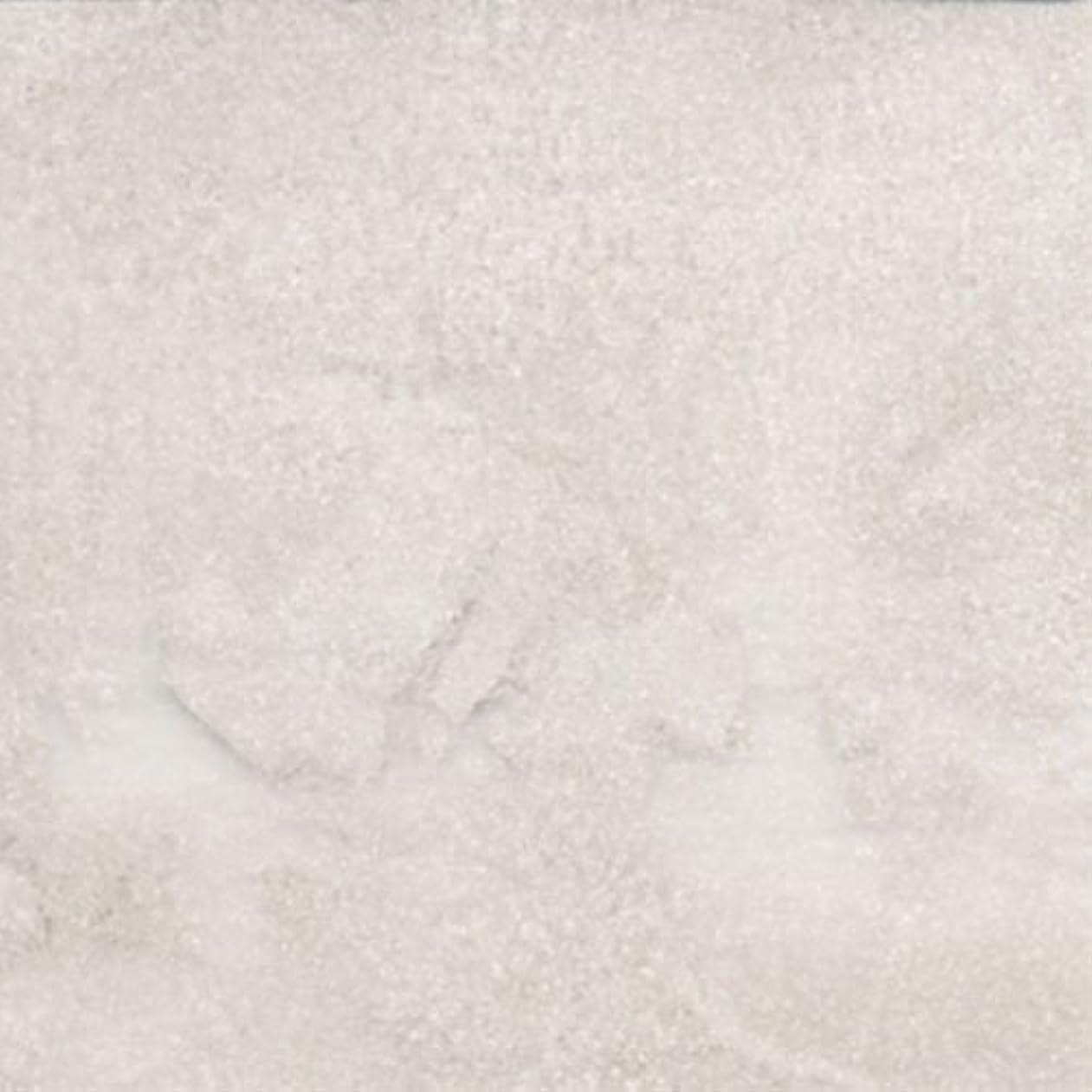 名前で囲まれた重荷ピカエース ネイル用パウダー パステルパウダー #840 ホワイト 0.25g