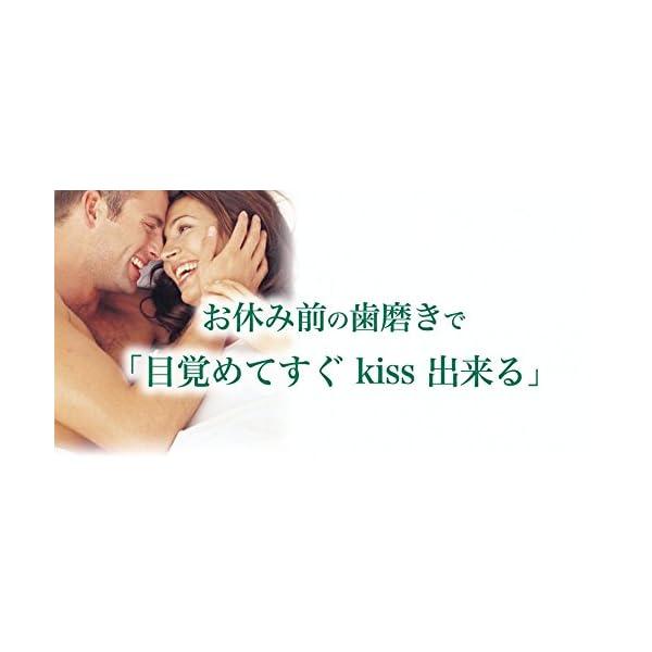 デンティス エチケット ハミガキ粉 100gの紹介画像4