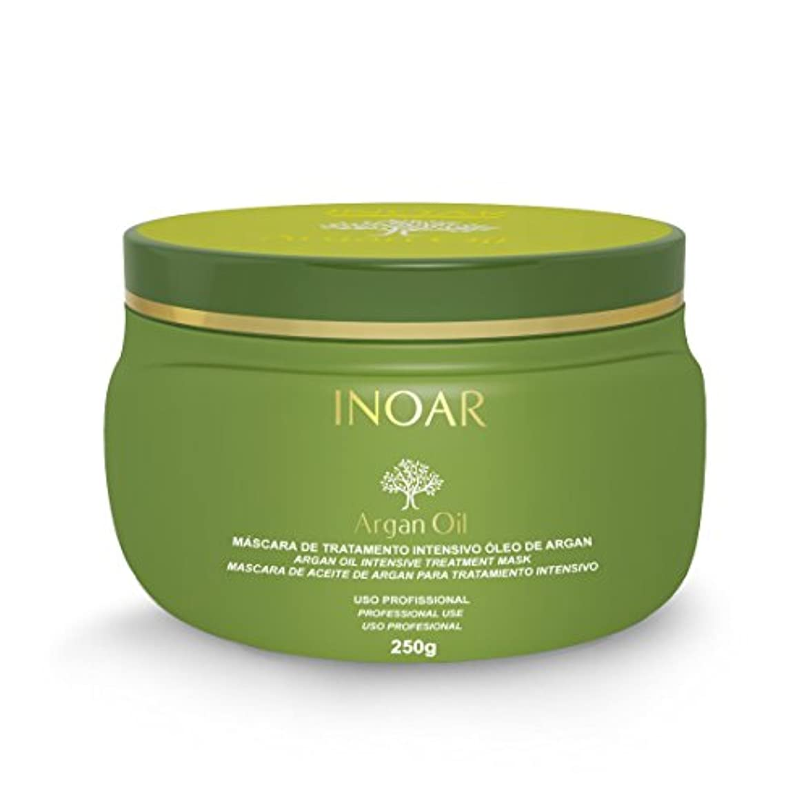 ストレスの多い圧縮送信するイノアー(INOAR)ホームケア アルガンオイル インテンシブ?トリートメントヘアマスク 250g
