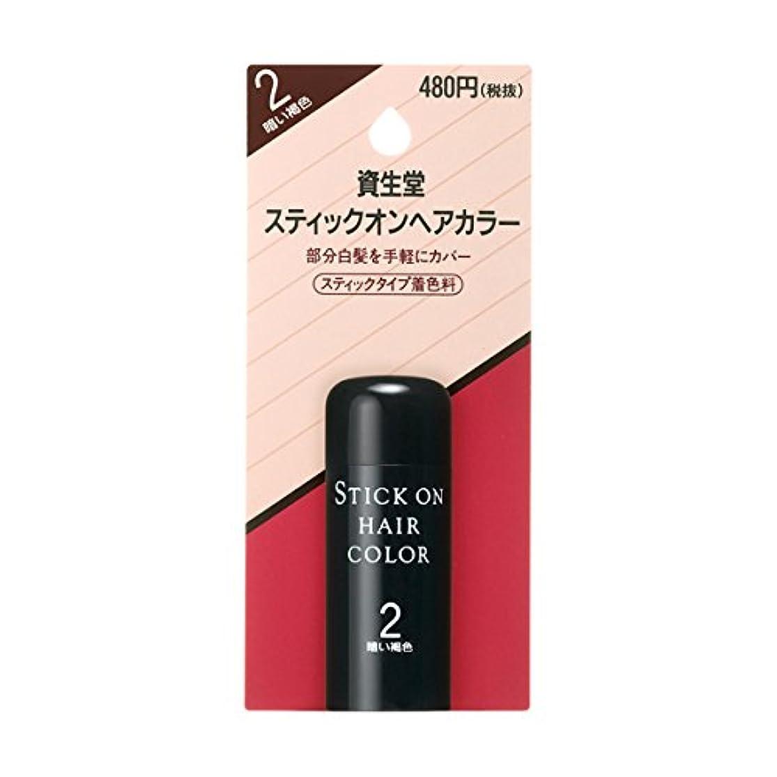 それるシンポジウム早いヘアカラー スティックオンヘアカラー 2 20g