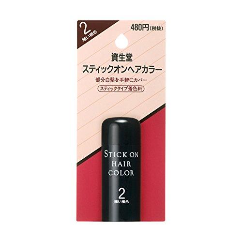 資生堂 ヘアカラー スティックオンヘアカラー 2(20g)