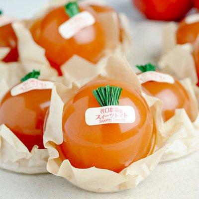 ゼリー スイーツ 北海道 谷口農場 トマト 12個 贈答品 お取り寄せ