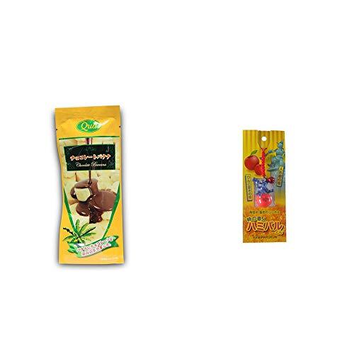 [2点セット] フリーズドライ チョコレートバナナ(50g) ・信州・飯田のシンボル 時の番人ハミパルくんストラップ