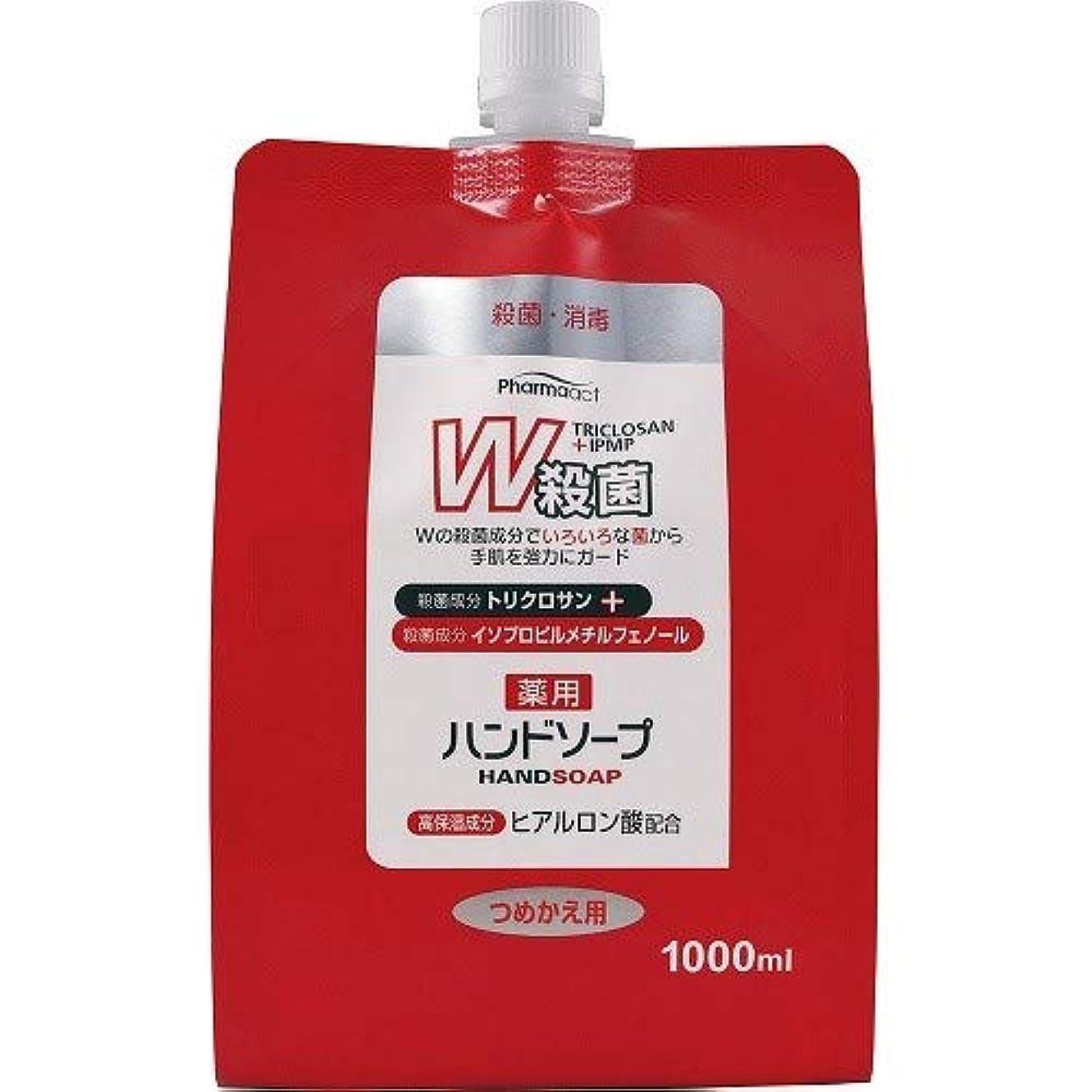 早いいとこ虫ファーマアクト W殺菌薬用ハンドソープ スパウト付き詰替 1000ml