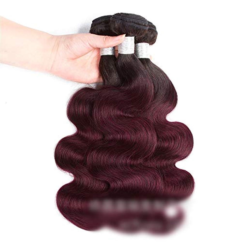 同化する興奮学士HOHYLLYA ワインレッドの人間の髪の毛の織りバンドルナチュラルヘアエクステンション横糸 - ボディウェーブ - 1B / 99Jワインレッド(1バンドル、100g)ロングカーリーウィッグ (色 : ワインレッド, サイズ : 26 inch)