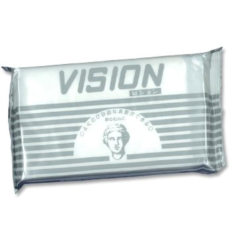 日本教材製作所 夢の粘土 「VISION(ビジョン)」 480g NKZ0832