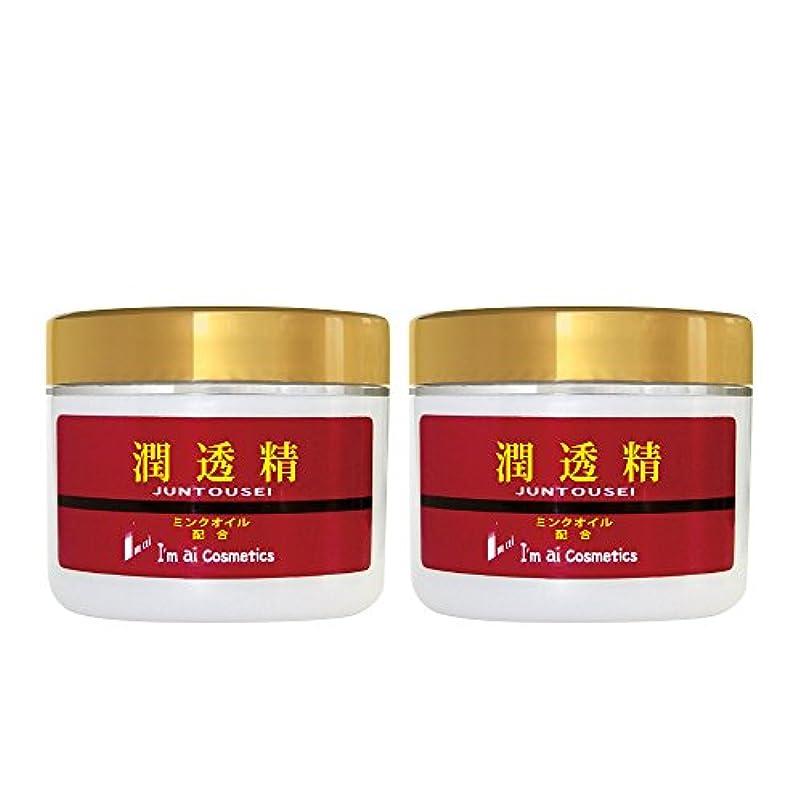 約束する恵み針【送料無料】潤透精クリーム(美容クリーム120g) 2個セット