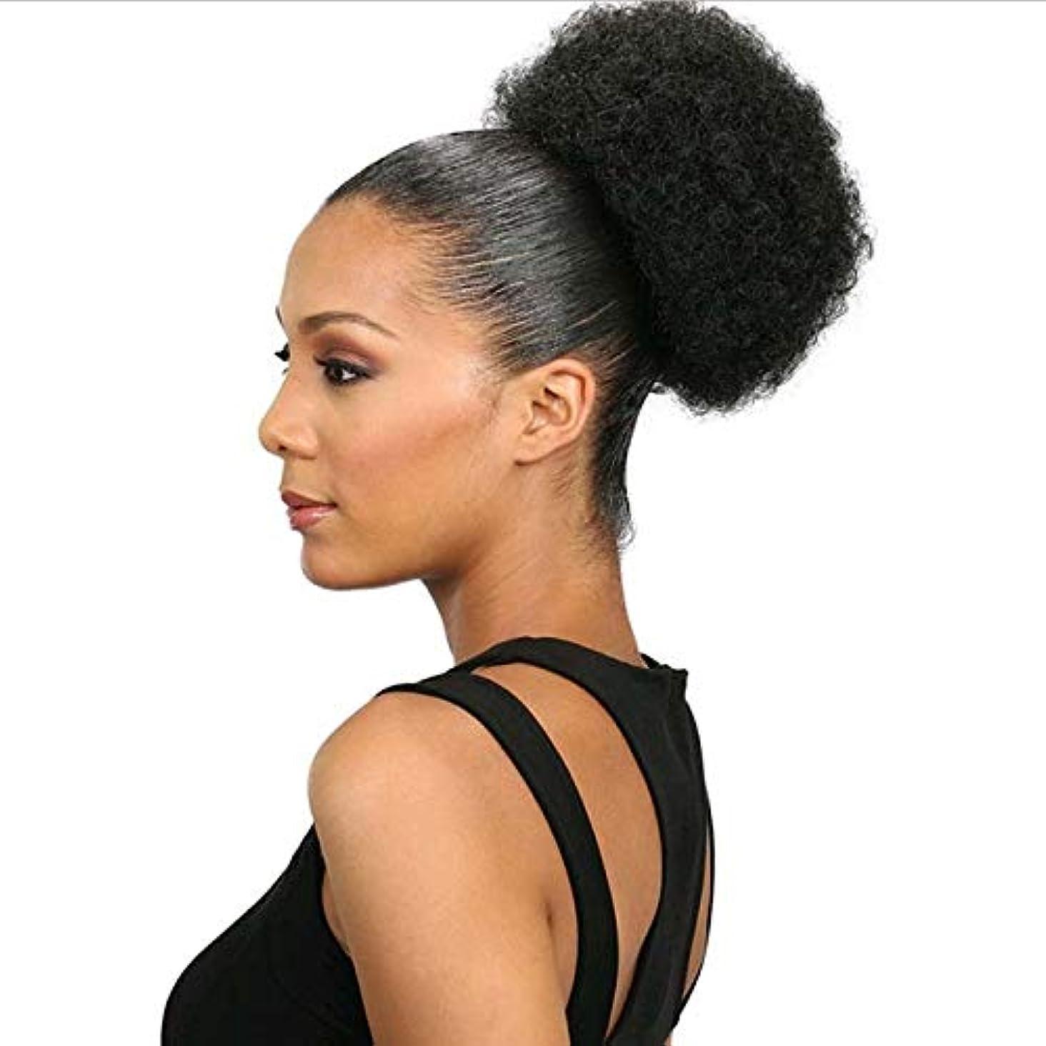 WTYD 美容ヘアツール FBBZT01ヨーロッパとアメリカの黒人爆発ヘッドふわふわカールヘアネットウィッグ (色 : Black)