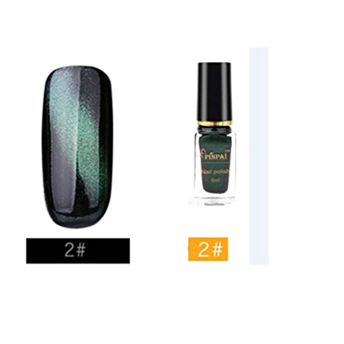 美しい暗い動機カラー ネイルカラー BOBOGOJP 人気 流行 キャッツアイマニキュア 塗りやすい キラキラ マニュキア ネイルポリッシュ 3D Cat Eye Nail Polish ネイルケアツール 指先 爪先 (B)