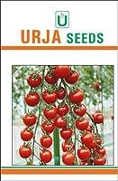高い成長SEEDSだけでなくPLANTS:SEED CHERRYトマト種子(パケットあたり25)