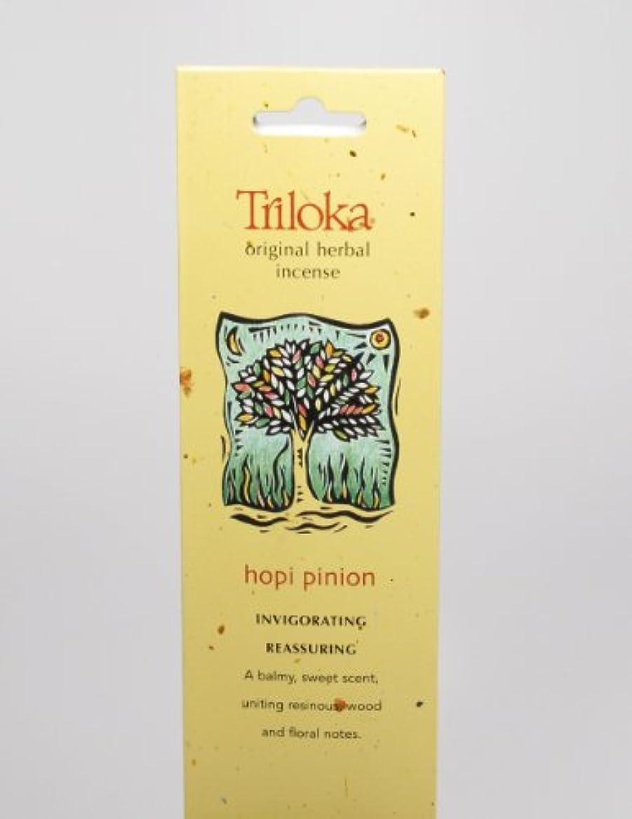 追加する簿記係疎外するHopi Pinon – Triloka元Herbal Incense Sticks