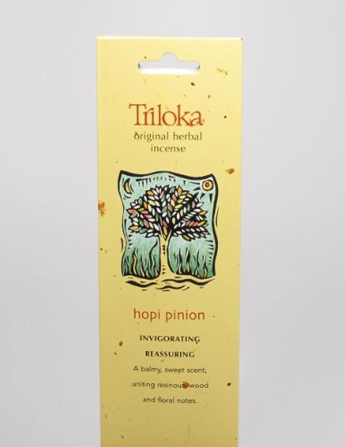 不条理誇張する溶融Hopi Pinon – Triloka元Herbal Incense Sticks