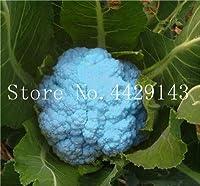 50個レアオーガニックRomanescoタワーブロッコリー盆栽、ローマのカリフラワーフラクタルヘッドBroccoflower野菜DIYホーム&ガーデン:18