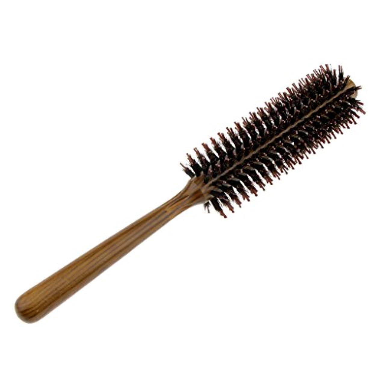 禁止パステル奨励しますFenteer ロールブラシ ヘアブラシ コーム ヘアスタイリング 櫛 くし カール 巻き髪 3サイズ選べる - S