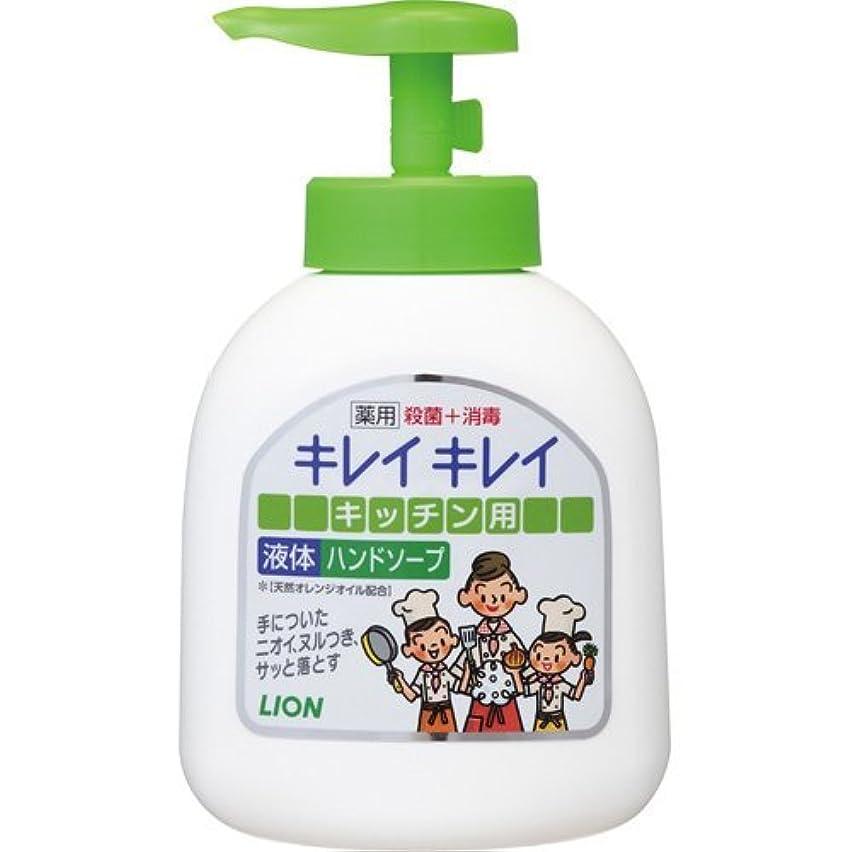掃くディンカルビルダイヤルライオン キレイキレイ 薬用キッチンハンドソープ 250ml×24点セット (4903301007333)