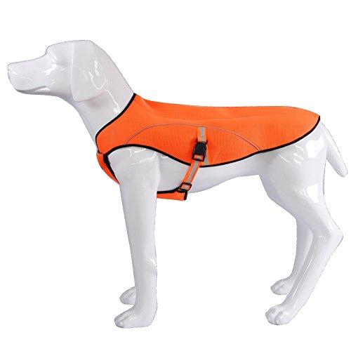 BlackDoggy 犬用クールベスト ひんやりお散歩タンクトップ 冷感犬服 熱中症対策グッズ(L)