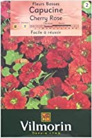 【Vilmorin社種子】【v101】ナスタチウム・Cherry Rose