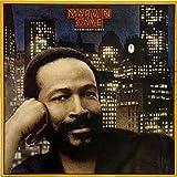 Marvin Gaye / Midnight Love
